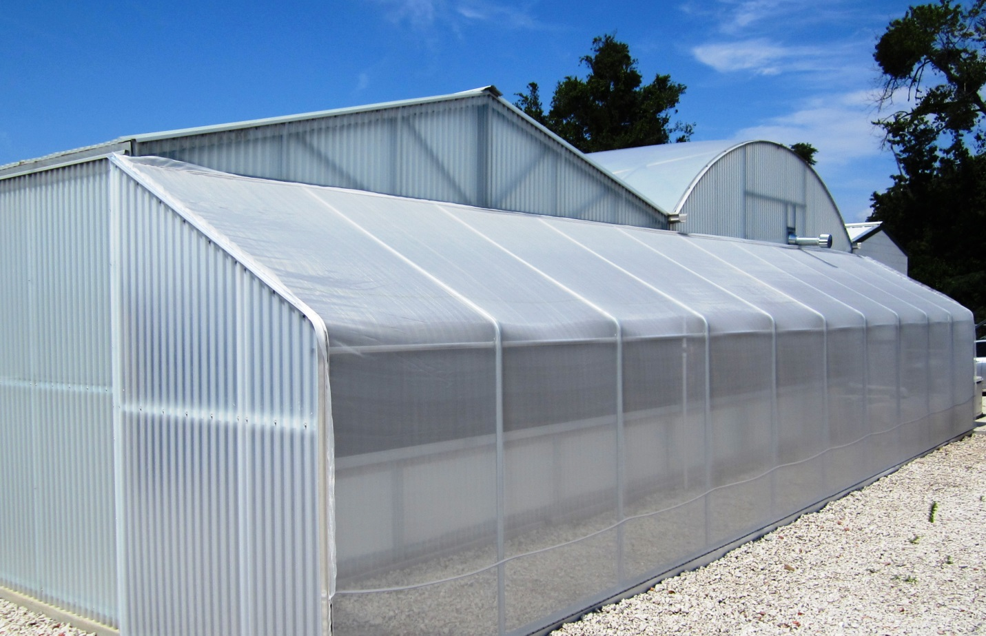 Insect Screens For Greenhouses Mesh 17 75 Optinet Quick