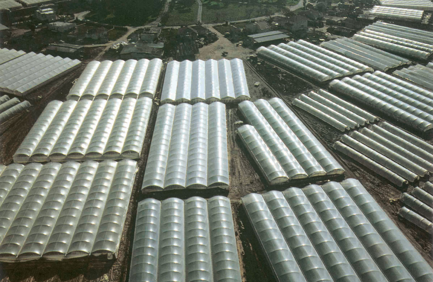 Polyethylene Films For Greenhouse Covering Quick Ship